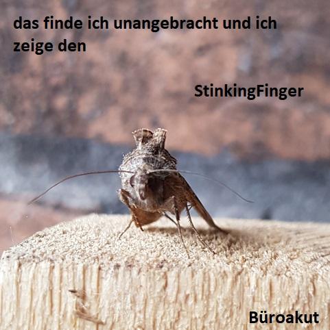 StinkingFinger